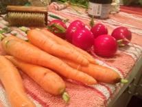 CSA_veggie_roast5