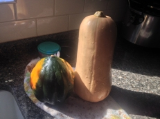 roasted_squash_soup_10